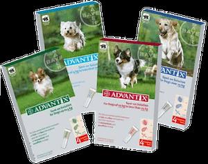paquetes de pipetas para perros marca advantix de bayer