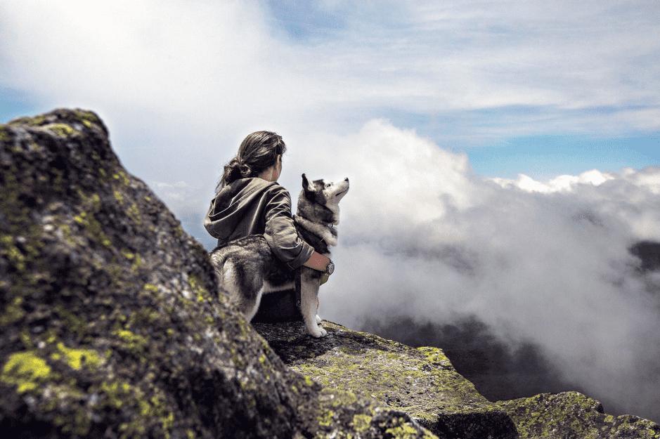 salir con el perro por el monte